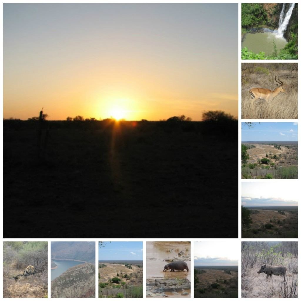 Blog pics 2