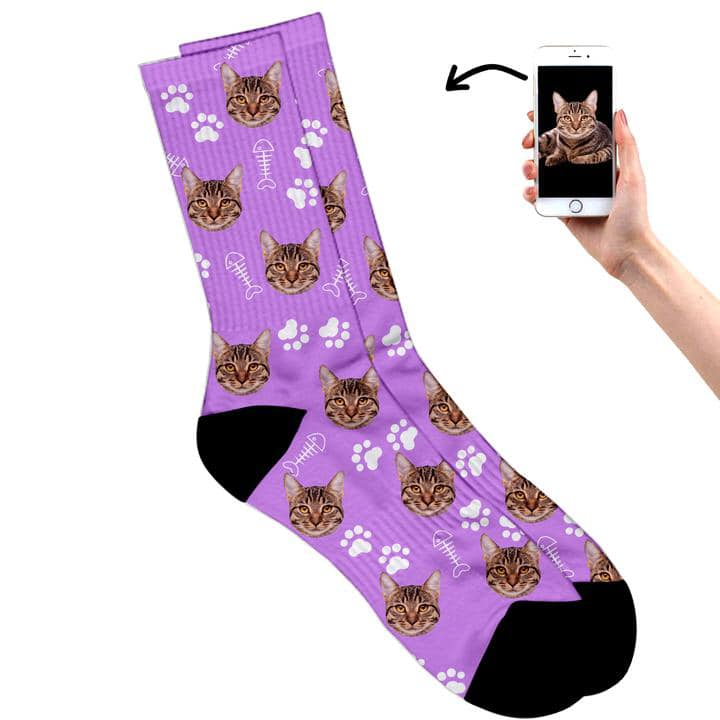 cats on socks